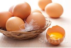 Куриные яйца С-1, С-0 недорого!