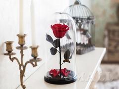 Проснись, скоро праздники! Порадуй свою любимую с помощью розы в колбе, которая будет у тебя уже чер