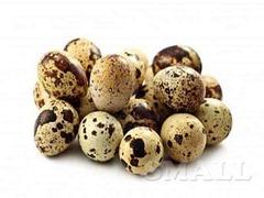Перепелиные яйца и мясо перепелов под заказ